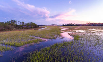 Charleston Residential Lots & Land For Sale: 141 Captains Island Drive