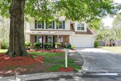 North Charleston Single Family Home For Sale: 8249 Longridge Road