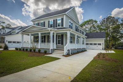 Single Family Home For Sale: 849 Shutes Folly Drive