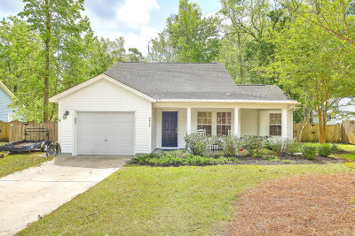 Johns Island Single Family Home For Sale: 3037 Marlin Road