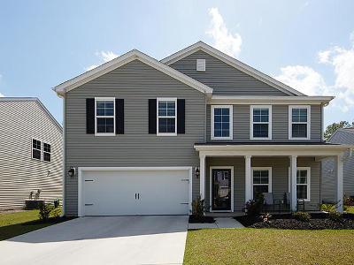 Summerville Single Family Home For Sale: 222 Pavilion Street