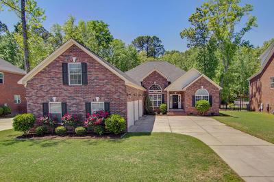 Single Family Home For Sale: 8732 Alexandria Drive