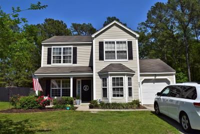 Summerville Single Family Home For Sale: 9053 Robins Nest Way
