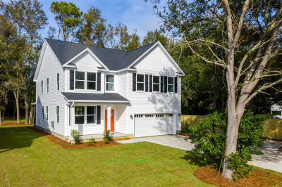 Charleston County Single Family Home For Sale: 1514 Grimball Ext. Road