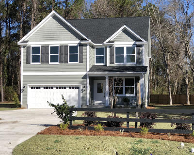 Charleston County Single Family Home For Sale: 1516 Grimball Ext. Road