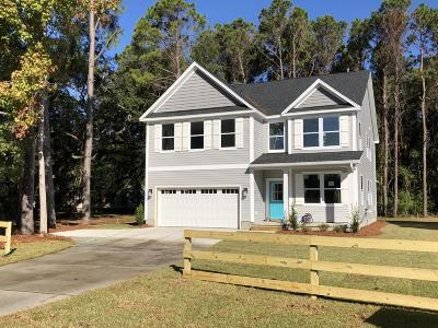 Charleston County Single Family Home For Sale: 1518 Grimball Ext. Road
