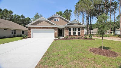 Summerville Single Family Home For Sale: 131 Greenwhich Drive