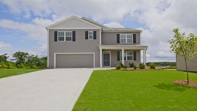 Summerville Single Family Home Contingent: 423 Zenith Boulevard
