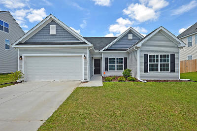 Single Family Home For Sale: 7833 Magellan Dr