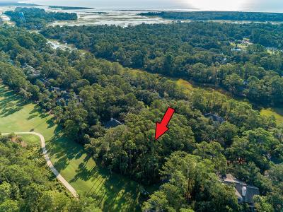 Johns Island Residential Lots & Land For Sale: 2510 Cat Tail Pond Road