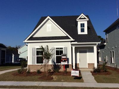 Charleston Single Family Home For Sale: 705 Rathall Creek Drive