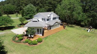 Berkeley County, Charleston County, Colleton County, Dorchester County Single Family Home For Sale: 7797 Seafield Road