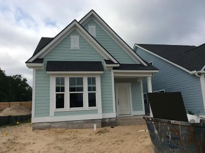 Charleston Single Family Home For Sale: 169 Rowans Creek Drive