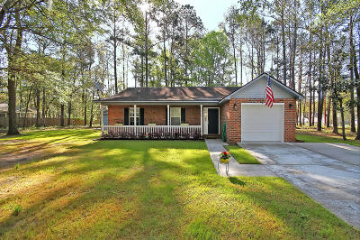 Johns Island Single Family Home For Sale: 3489 Berryhill Road