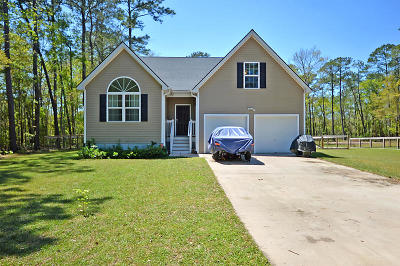 Johns Island Single Family Home For Sale: 3175 Edenvale Road