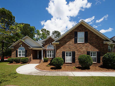 Goose Creek Single Family Home For Sale: 147 Welchman Avenue