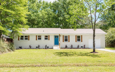 Goose Creek Single Family Home For Sale: 234 Jean Wells Drive