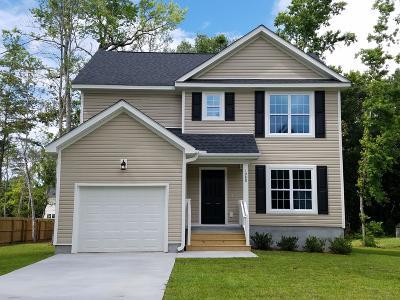 Charleston County Single Family Home For Sale: 1998 Kay Street