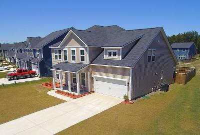 Summerville Single Family Home For Sale: 162 Basket Grass Lane