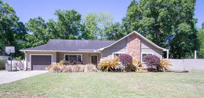 Charleston Single Family Home Contingent: 1203 Chicorie Way