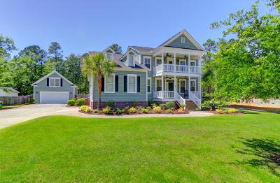 Summerville Single Family Home For Sale: 1010 Mount Whitney Drive