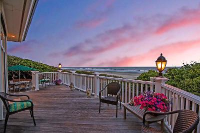 Charleston County Single Family Home For Sale: 33-B Eugenia Avenue