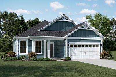 Charleston County Single Family Home For Sale: 3333 Grand Bay Lane