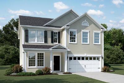 Charleston County Single Family Home For Sale: 4444 Grand Bay Lane