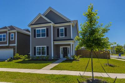 Johns Island Single Family Home For Sale: 1459 Milldam Pass
