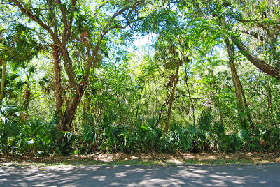 Residential Lots & Land For Sale: 3143 Privateer Creek Road