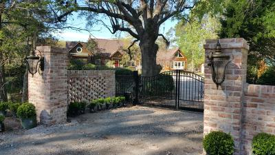 Mount Pleasant Single Family Home For Sale: 4400 Wando Farms Road