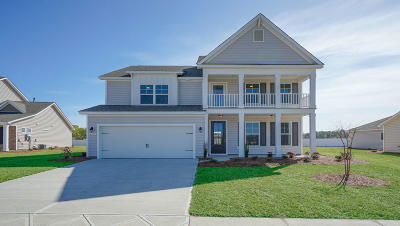 Moncks Corner Single Family Home For Sale: 629 Woolum Drive