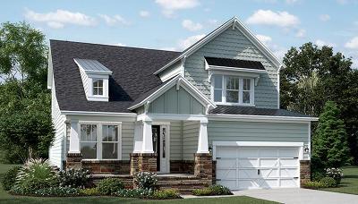 Mount Pleasant Single Family Home For Sale: 1246 Gannett Road