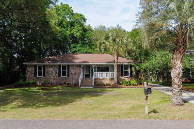Mount Pleasant Single Family Home For Sale: 1166 Lazy Lane