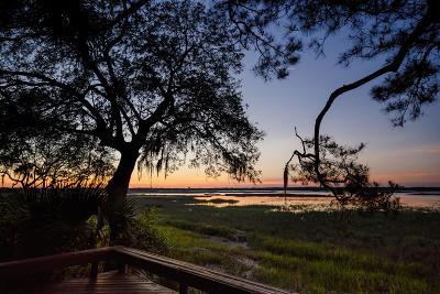 Kiawah Island Single Family Home For Sale: 165 Marsh Hawk Lane