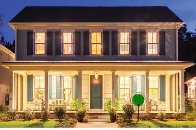 Summerville Single Family Home For Sale: 338 Bright Leaf Loop