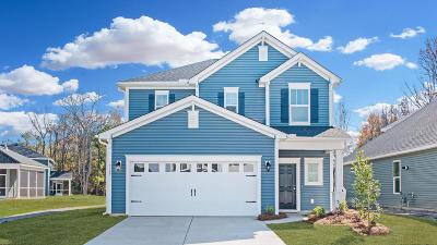 Johns Island Single Family Home For Sale: 3116 Harding Court