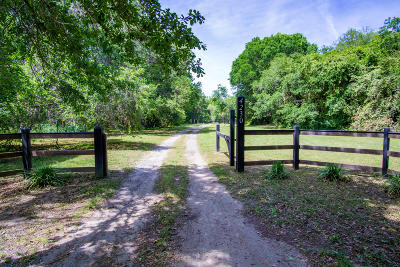 Single Family Home For Sale: 4230 River Road