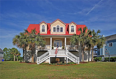 Ravenel Single Family Home For Sale: 6078 Jacobs Point Boulevard