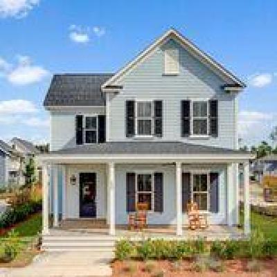 Summerville Single Family Home For Sale: 550 Cross Park Street Lane