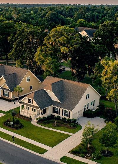 Charleston Single Family Home For Sale: 219 Shadowmoss Parkway