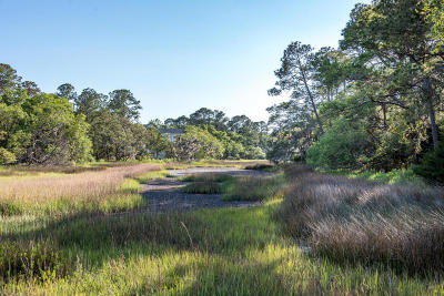 Seabrook Island Residential Lots & Land For Sale: 2953 Deer Point Drive