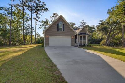 Johns Island Single Family Home For Sale: 3281 Walter Drive