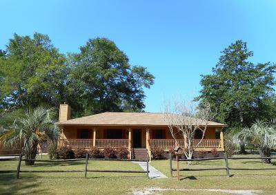 Walterboro Single Family Home For Sale: 103 Perry Road