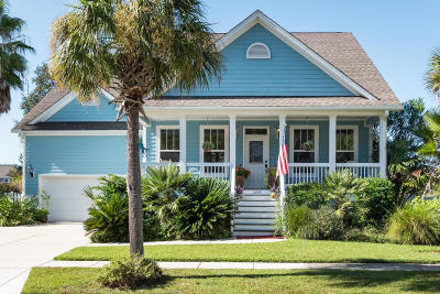 Mount Pleasant Single Family Home For Sale: 2243 Sandy Point Lane