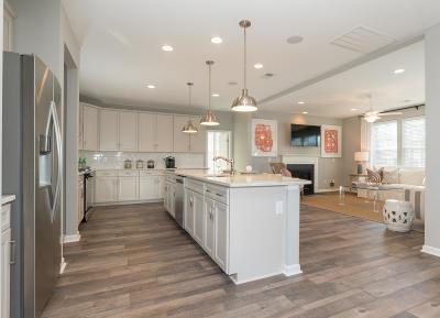 Summerville Single Family Home For Sale: 103 Coastal Wood Lane