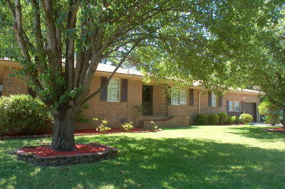 Charleston Single Family Home For Sale: 23 Carson Drive