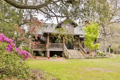Johns Island Single Family Home Contingent: 2998 Plow Ground Road