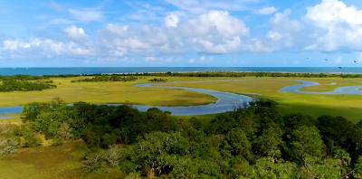 Charleston County Residential Lots & Land For Sale: 248 Eagle Point Road