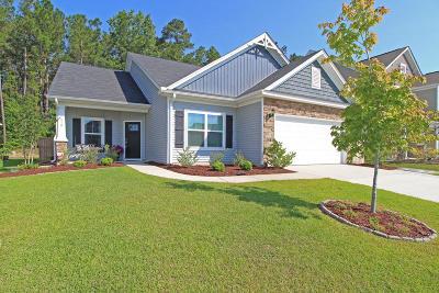 Single Family Home For Sale: 410 Allamby Ridge Road